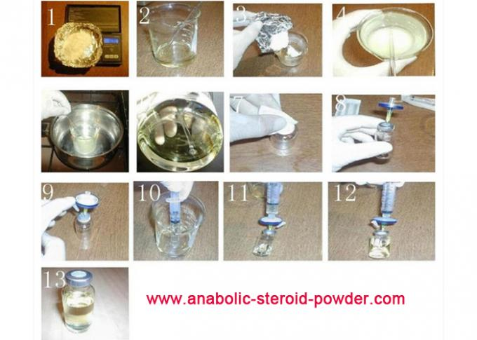 Anabolic Steroid Powder Testosterone Phenylpropionate Testosterone  Enanthate Injectable