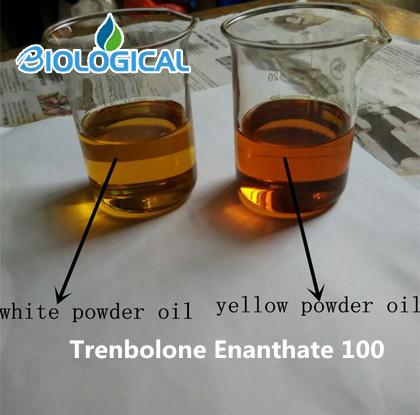 Testosterone Propionate Injectable Oil Tests P Roid Liquid for Bodybuilder