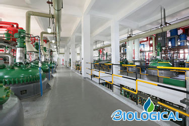 China Hubei Holy Biological Co., Ltd. manufacturer profile