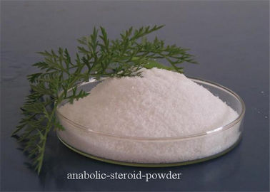 White Testosterone Steroid Powder Lidocaine Hydrochloride for Anti - pain
