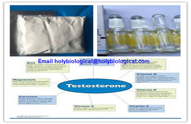 China Raw Material Testosterone Steroid Hormone Prop Testosterone Propionate for Muscle Gain supplier