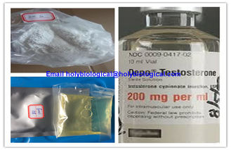 China Muscle Growth Testosterone Steroid Hormone Enanthate Test Enanthate Powder supplier