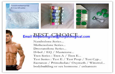 China ​Healthy Intramuscular Hormone Steroid Test Enanthate Testosterone Enanthate supplier