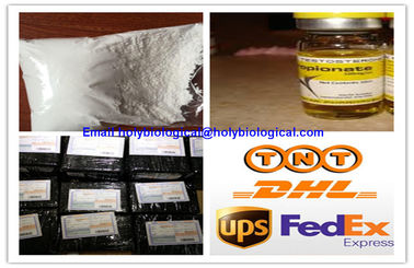 China Performance Enhancement Anabolic Steroid Powder Testosterone Propionate for Bodybuilding supplier