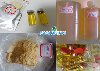 China Semi-finished Masteron 100mg/ml Injectable  Drostanolone Propionate 100mg Liquid supplier