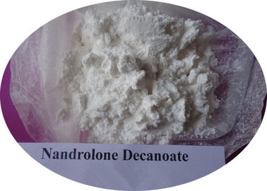China High Purity Nandrolone DECA Durabolin / Nandrolone Decanoate 360-70-3 supplier