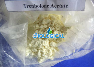 China Trenbolone Steroid Powder Trenbolone Acetate / Tren Ace / Tren A Steroid For Bodybuilding supplier