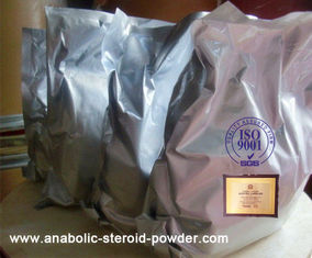China Safe Injectable Testosterone Cypionate / Test Cyp for Muscle Growth White Anabolic Steroid Powders supplier