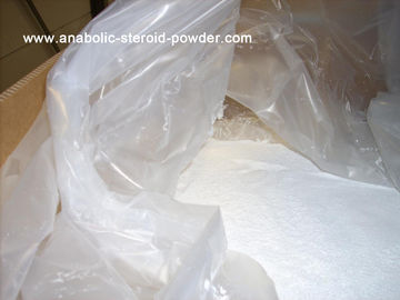 China Pharmaceutical Steroids Testosterone Enanthate For Anti-Aging Powder supplier
