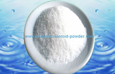 White Natural Testosterone Powder Testosterone Enanthate Steroid Hormone Powder
