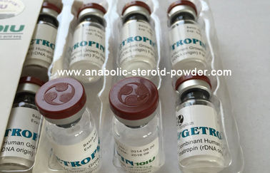 Human Growth Hormone 8iu/vial,25vials/kit White Freezed for Muscle Enhance