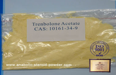 China Trenbolone Steroids Acetate 99% Purity Trenbolone Acetate USP Standard CAS 10161-34-9 factory