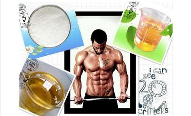 China Powerful Anabolic Trenbolone Steroids Light Yellow Powder Trenbolone Acetate factory