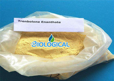 China Natural Anabolic Steroid Trenbolone Enanthate Trenbolone Steroids Powder In Medicine factory