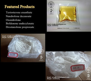 Natural Anabolic Nandrolone Steroids Powder Mestanolone Male Hormone CAS 521-11-9