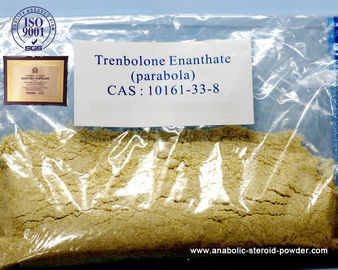 Injectable or Oral Yellow Trenbolone Enanthate Powder Trenbolone Steroids10161-33-8
